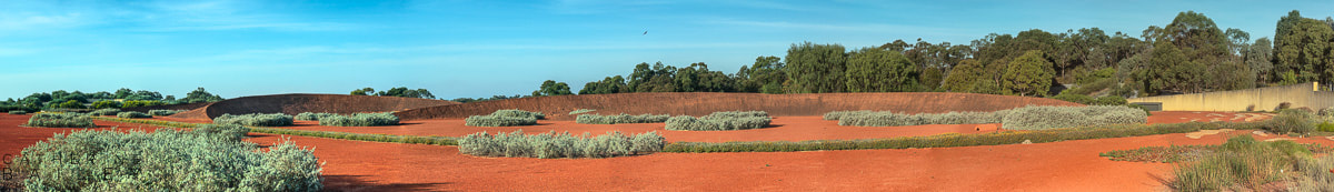 Red Sand Garden, Cranbourne | Catherine Bailey Photography
