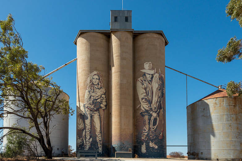 Silo Art Trail - Rosebery | Catherine Bailey PhotographyPicture