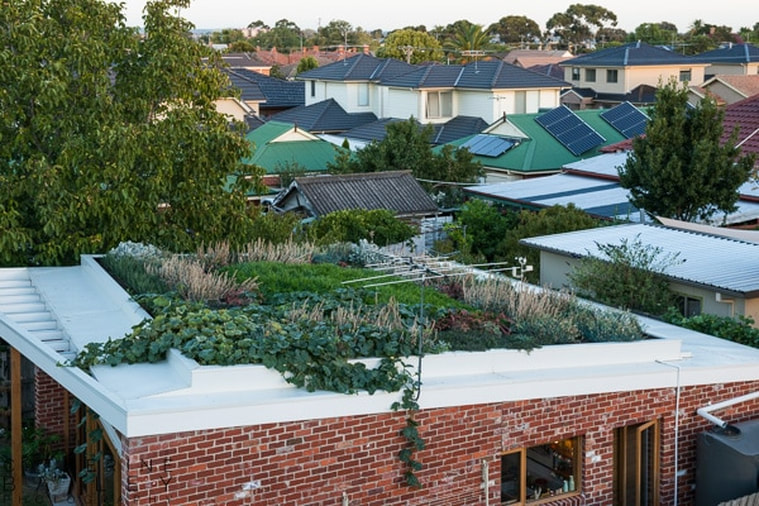 Rooftop garden | Catherine Bailey Photography