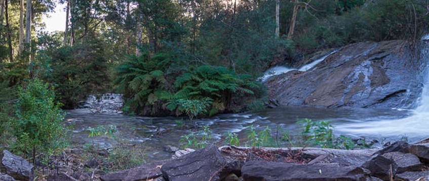 Catherine Bailey Photography | Watts River, Maroondah Reservoir Park